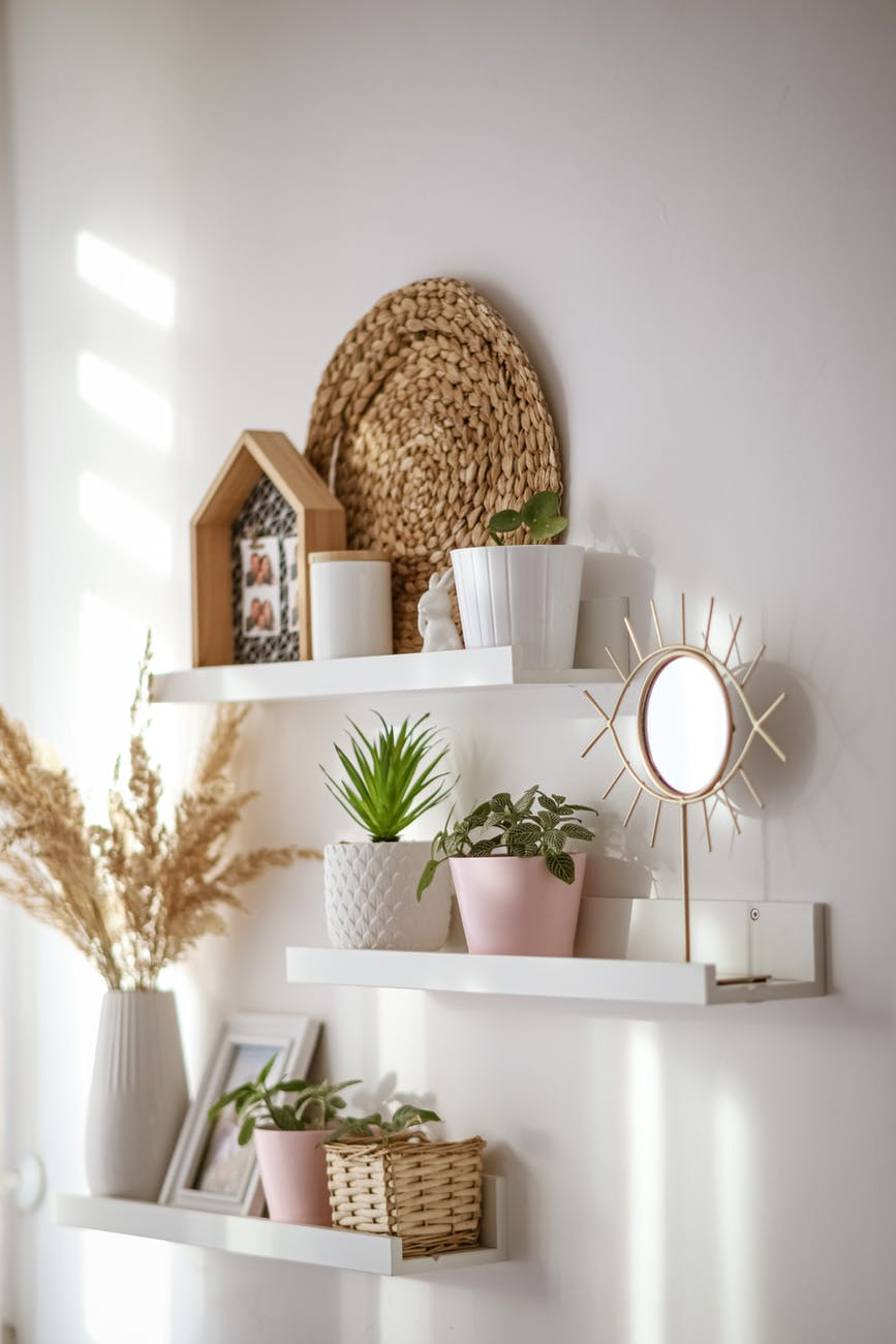interior of cozy room with potted flowers