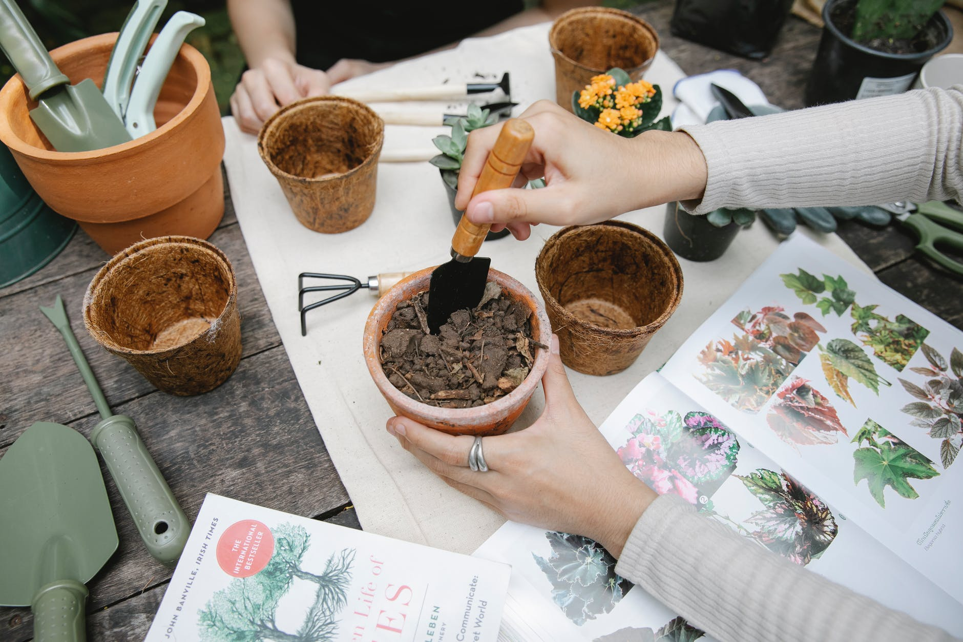 woman mixing soil in peat pot for planting flowers